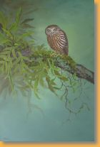 NZ Morepork Owl by Janet Marshall 95H x 60Wcms acrylic on canvas.jpg